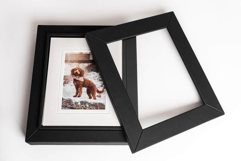 Pet Photography Albums